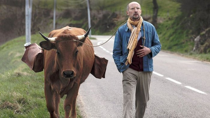 One Man and His Cow 01