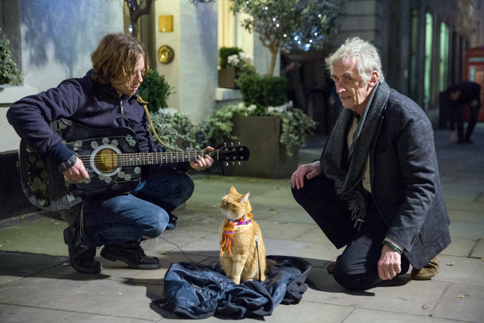 A Street Cat Named Bob blu-ray 01